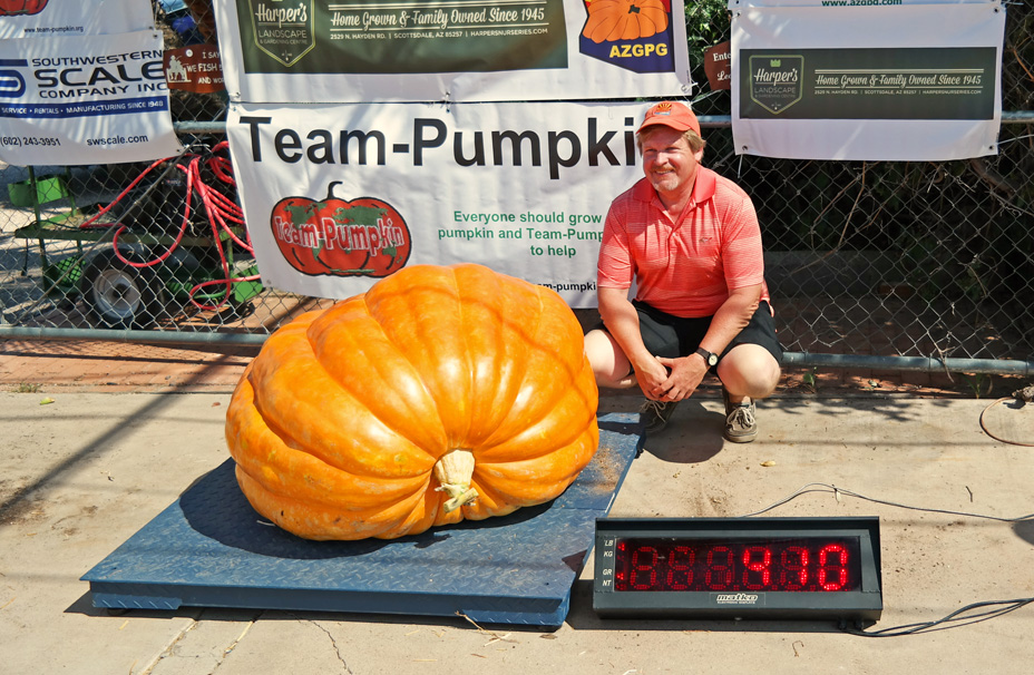Arizona's Giant Pumpkins - 410 pounds